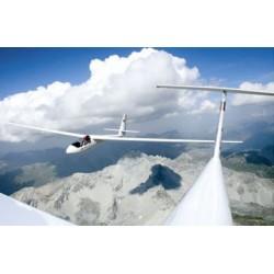 Gliding Prints