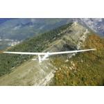 Glider Print  c  ASW15 Asprey.jpg